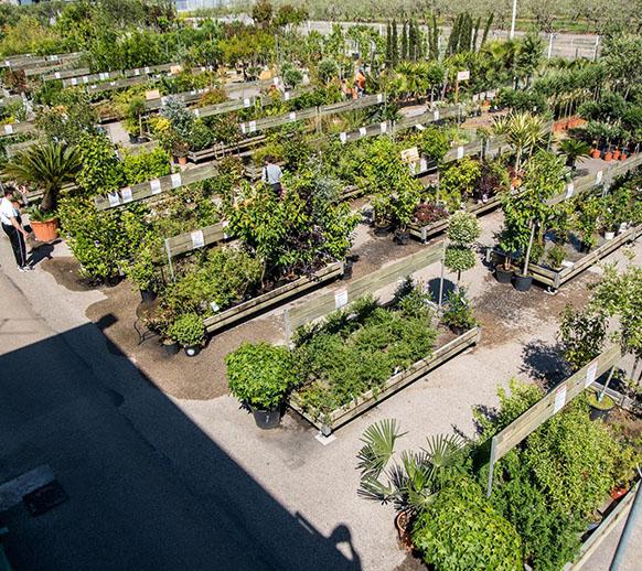 Jardiland – Centre Agricole Garelli et Ricci, à Nice : notre ...
